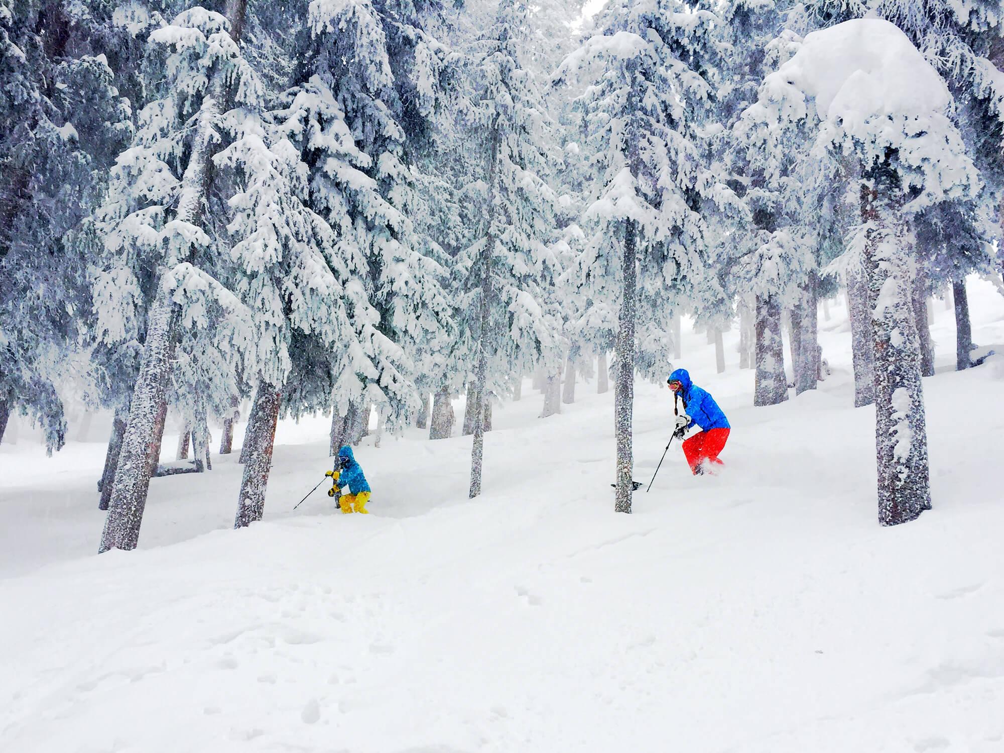 Telluride Ski Snow